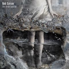 Nad Sylvan The Bride Said No Cover 2017